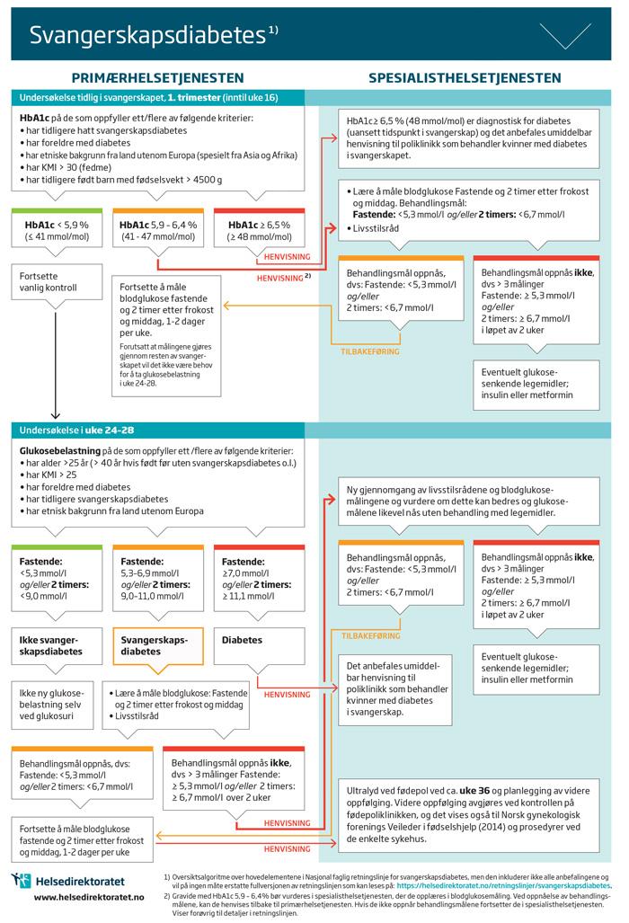 helsedirektoratet retningslinjer diabetes